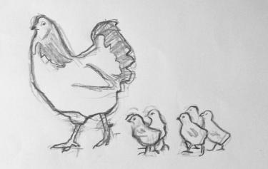 Høne2