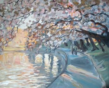Japanske-Kirsebærtræer1