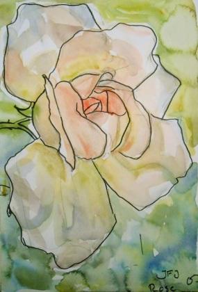 Rose,21x30,5,350,-