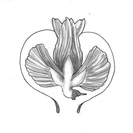 Paradisfugl