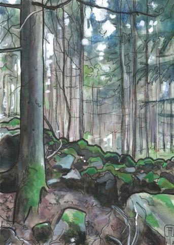 Svensk skov